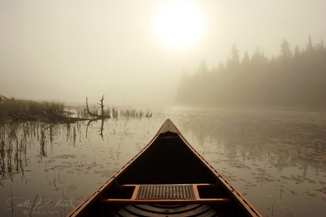 deer-misty-canoe